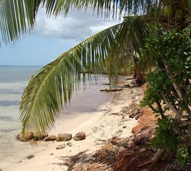 Granma Coast Cuba
